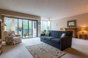 living-room-205-1000-king